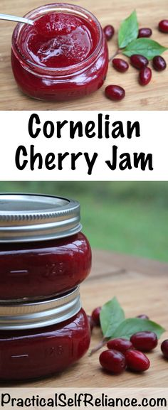 Cornelian Cherry Jam Recipe for Canning ~ Dogwood Cherry Jam Healthy Eating Tips, Healthy Nutrition, Cherry Jam Recipes, Vegetable Drinks, Sweet Tarts, Canning Recipes, Food Hacks, Tasty, Cherries