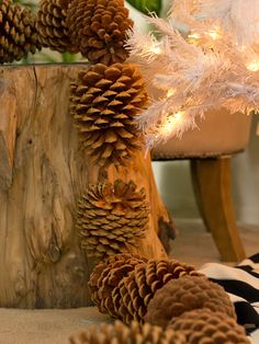 43 Best Giant Pine Cones Images Pine Cones Pine Cone Crafts Christmas Decorations