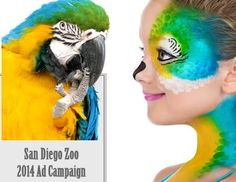 Face Painting a Parrot. Loved using the metallic face paint for this project.