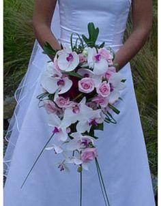 rosas y orquideas