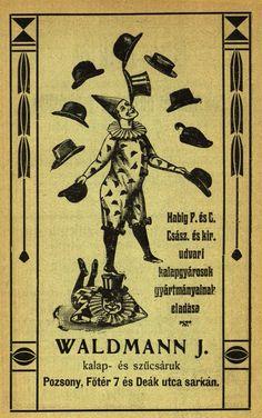 V roku 1907 vyšiel v Prešporku moderný turistický sprievodca. Z Obrazového sprievodcu Prešporkom sa zaiste predalo nemálo výtlačkov, veď v tomto roku sa v meste konali hneď dve veľkolepé podujatia. Krajina si pripomínala 700. výročie narodenia sv. Alžbety a organizovalo sa tu aj 34. putovné zasadnutie Spolku uhorských lekárov a prírodovedcov. Bratislava, Movies, Movie Posters, Art, Art Background, Films, Film Poster, Kunst, Cinema