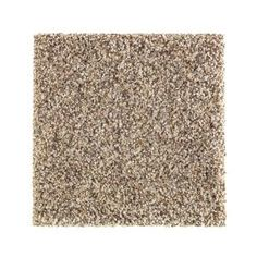 Provide a modern and sleek design to your home by choosing this PetProof Sachet Color Backcountry Texture Carpet. Vacuum regularly and spot clean.