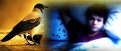 kala jadu ko paltana (lotana) quran pak se +91-977208027 in france,