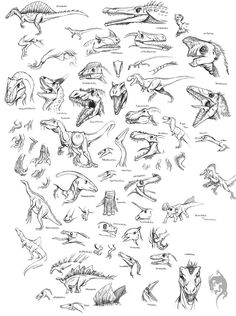 dinosaur drawings | Dinosaur Sketches by Iguana-Teteia on deviantART