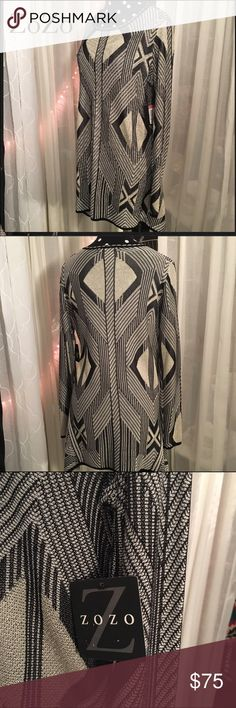 ZoZo NWT SWEATER/ DRESS ZoZo beautiful silver, black and multiple colors woven into this lush sweater • it's really a great piece• I bought for a top and it's to long on me and if course to short for a dress, so hopefully someone will fit perfectly • tag still attached excellent perfect condition Sweaters