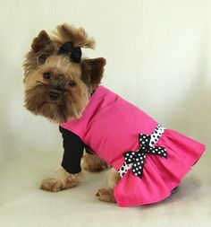 Hot Pink Corduroy Dress for Dogs
