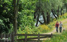 Ontdek Limburg te voet en geniet van groene en afwisselende landschappen.    Surf naar:  www.toerismelimburg.be/wandelen