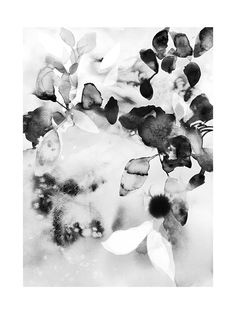 """Flora in B+W"" - Art Print by V E R Y M A R T A in beautiful frame options and a variety of sizes."