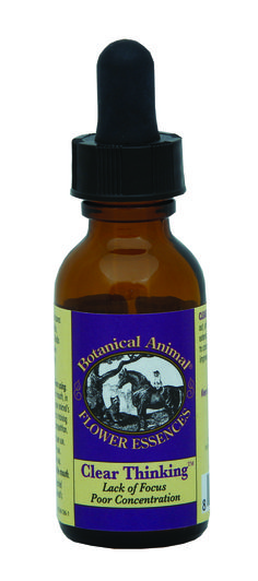 Holistic Concentration Aid | Botanical Animal Clear Thinking