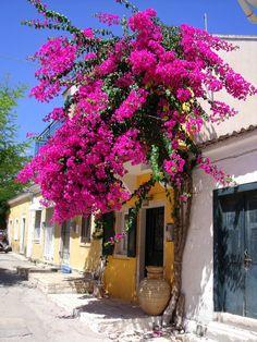 Antipaxos, Greece. (by uglyjoefish [Davy])