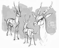 jonathan kuo artwork: gazelle studies