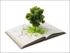 """""""7 Ways to Help Your Child Reduce Their Carbon Footprint at School!"""" READ MORE @ www.organic4greenlivings.com"""