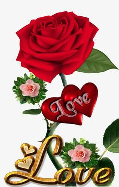 1 million+ Stunning Free Images to Use Anywhere Beautiful Love Images, Love Heart Images, Love You Images, Beautiful Rose Flowers, I Love Heart, Rose Flower Wallpaper, Heart Wallpaper, Love Wallpapers Romantic, Love You Gif