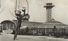 Diergaarde Blijdorp 1950