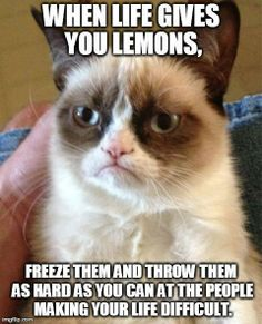 When life gives you lemons, freeze them and throw them as hard as you can at the people making your life difficult.