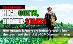 Special Report: How Organic Farmers are Forced to Bear the Costs (and the Risks) of GMO Contamination