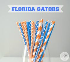 Want to show your school pride? These straws add the perfect touch to graduations, birthdays, and tailgates! University of Florida Gators Boise