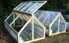 Extend Your Garden's Growing Season: DIY Mini-greenhouse