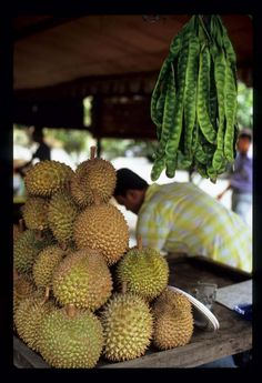 Sumatra. The unavoidable Durian, the 'Queen of fruits' smells like a ripe cheese ,and they will pauper themselves to serve it to you, their honored guest. You can't say no.