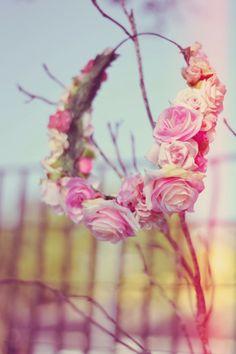 O Fantástico Mundo de Jess: Fotos: Coroa de flores
