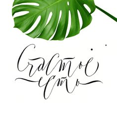Motivational Wallpaper, Print Fonts, Calligraphy Letters, Typography Poster, Art Girl, Hand Lettering, Cool Art, Graphic Design, Drawings
