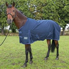 Elico Pennine 200 Turnout Rug - Navy Blue This well-shaped rug has been especially designed by ourselves and is ideal for autumn and winter use It is