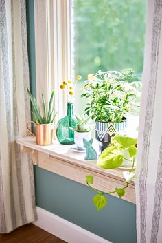 Bring the outdoors in! A windowsill is the perfect spot for a mini garden. Display bright plants in pretty, colorful containers to bring energy to your space.