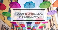 Culture Archives - My Travel in Tuscany Famous Italian Songs, New Movies, Tuscany, Culture, Umbrellas, Travel, Ceilings, Bucket, Tips