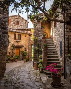 """""""Montefioralle, Greve in Chianti"""" The Beautiful Country, Beautiful Places, Naples, Milan, Medieval, Brick Arch, Outdoor Steps, Beau Site, Old Street"""