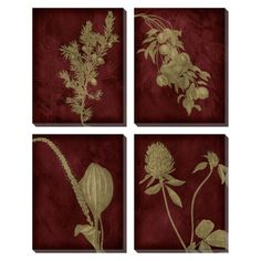 Etched Plants Group Wall Art Set of 4   This quartet collection can add shape to the walls, and the burgundy hues go well with the burgundy-crimson-maroon curtains; plus, this quartet will be lovely against the golden yellow walls of the living room  ...