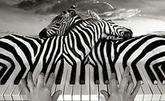 Surreal Photo Manipulations - Google Search