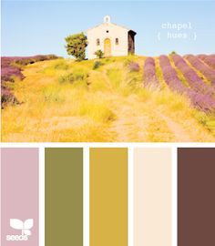 Create a color pallet from a picture
