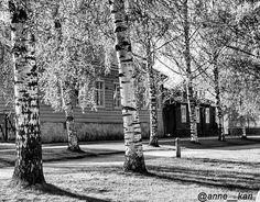 #kokkola #bnw_rose #scandinavia_bw #igclub_bnw #loves_bnw #igw_noir #jj_blackwhite #ig_bnw #amateurs_bnw #noir_shots #pocket_bnw #ig_shotz_bw #igblacknwhite #ig_great_shots_bnw by anne__kari