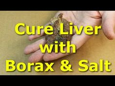 How to cure chicken liver with borax and salt - tough chicken liver Carp Fishing Rigs, Catfish Fishing, Fishing Bait, Fishing Life, Gone Fishing, Fishing Trips, Fishing Stuff, Blue Catfish, Catfish Bait