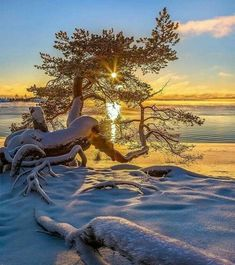 Decoration of the sun - Karelia. November 2016 The season of my author photo tours on winter Lake Ladoga opened! Beautiful Sunset, Beautiful World, Beautiful Places, Winter Pictures, Nature Pictures, Amazing Photography, Nature Photography, Winter Scenery, Winter Beauty