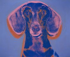 The Long and Short of it All: A Dachshund Dog News Magazine: Dachshunds in Pop Culture: Andy Warhol