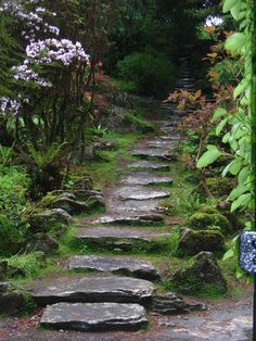 We will have a walkway something a bit like this at the Irish home.