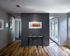 Do above mantel or entire fireplace wall in darker gray and the other walls in lighter gray?