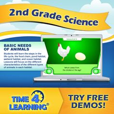 In second grade science, Slick learns about life cycles in the chapter Patterns in Nature. In this lesson, the chicken and the egg example is used to illustrate a life cycle.