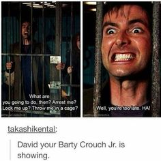 Why am I the only one in school that knows David played Barty Crouch Jr.? And that he is an awesome Doctor? Whovian out, Allons-y