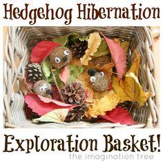 The Imagination Tree: Hedgehog Hibernation Exploration Basket Autumn Art, Autumn Theme, Winter Theme, Nursery Activities, Toddler Activities, Preschool Themes, Sensory Activities, Hedgehog Hibernation, Leaf Crafts