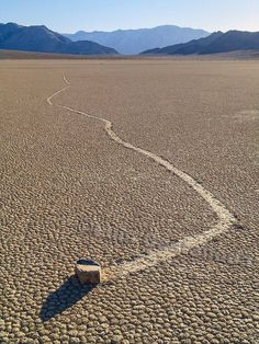 Rolling Rock: The Racetrack, Death Valley by Luis Castañeda