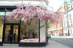 visual merchandis, blossom tree, london, chelsea flower show, window displays