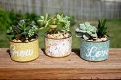 Mini Succulent Planters ~ a cute recycle craft that's great for kids!