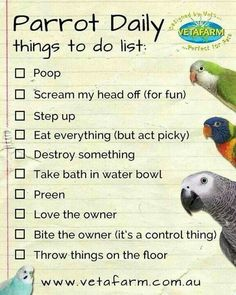 It's a control thing. #parrotfoodlist