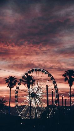 ferris wheel with fairy lights photographed at sunset surrounded by tall palm trees cute aesthetic wallpapers Iphone Wallpaper Tumblr Aesthetic, Iphone Background Wallpaper, Aesthetic Pastel Wallpaper, Aesthetic Backgrounds, Aesthetic Wallpapers, Sky Aesthetic, Aesthetic Images, Aesthetic Collage, Aesthetic Photo