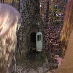 Forest Fairy, Fairy Land, Fairy Tales, Magical Forest, Fairy Dust, Catty Noir, Estilo Rock, Photo Dump, Nymph