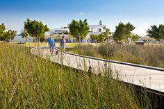 Southport Broadwater Parklands by AECOM Design and Planning 04 « Landscape Architecture Works | Landezine