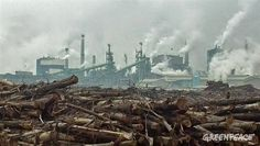 Asia Pulp & Paper is planning to build a huge new pulp mill in South Sumatra, Indonesia, although the company is still trying to publicly deny it. This will reportedly be one of the world's biggest pulp mills, with a planned production capacity of up to 2 million tonnes per year. APP is already in contact with large machin