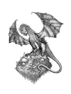Black and white ink drawing of a dragon. Fantasy illustration